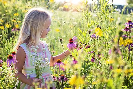 girl standing on purple coneflower fields picking flowers