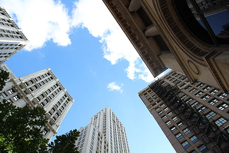Low-angle View of High-rise Buildings