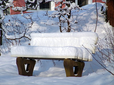 white and brown wooden bench covered with white snow near brown bare trees at daytime