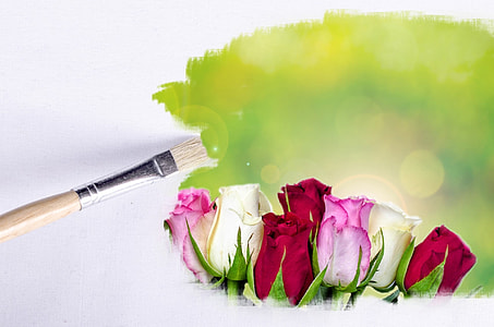 red, pink, and white roses painting