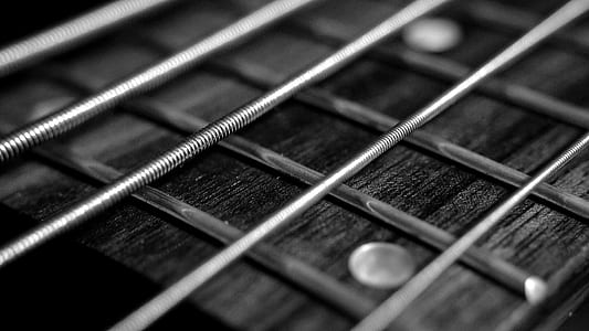 grayscale photo of guitar strings