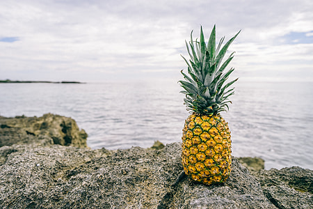 pineapple fruit on gray stone near body of water during daytime