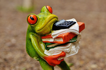 frog carrying books ceramic figurine