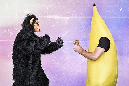 Gorilla and Banana man fighting