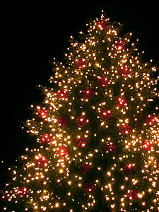 turned on yellow string lights on green Christmas tree