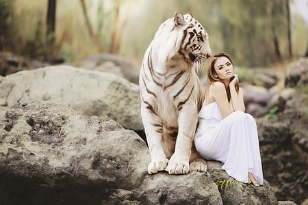 photography of woman in white dress beside the white and gray tiger