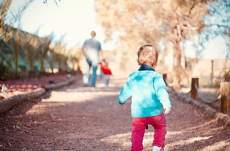 child, toddler, follow, path, walk