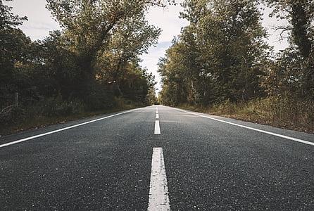 Landscape Photography of Concrete Road