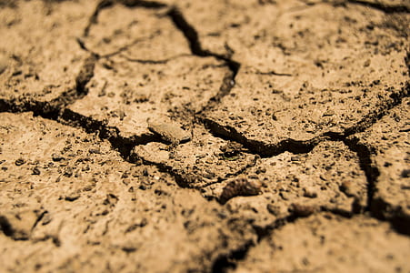 cracked dry soil closeup photography