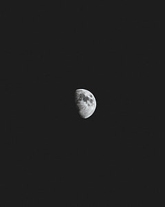 white moon photography