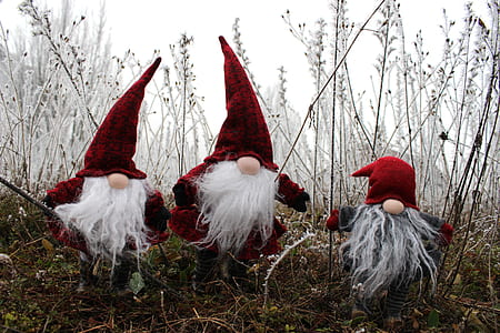 three red gnomes on grass field