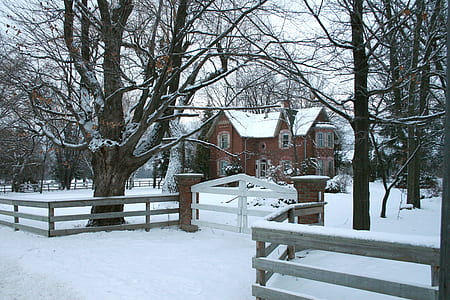 snow covered brown house