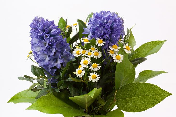 Royalty free photo purple and white flower arrangement pickpik purple and white flower arrangement mightylinksfo