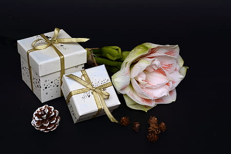 white, pink, and gold-colored gift boxes and flower