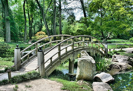 gray wooden bridge over creek in forest during daytime