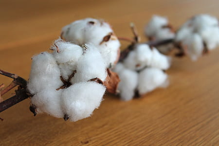 white and brown cotton decor