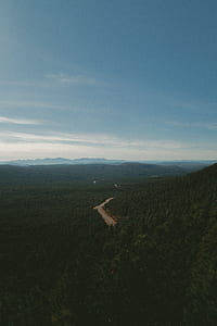 bird's eye view photography of road in the middle of forest