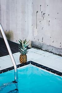 Pineapple Beside the Swimming Pool