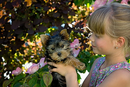 girl holding a black and tan Yorkshire terrier puppy