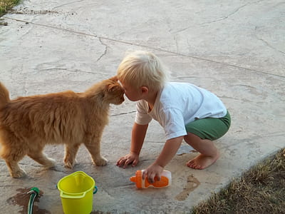 toddler and orange cat standing side-by-side