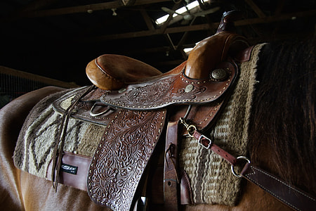brown leather horse saddle on the back of the horse