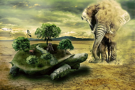 grey elephant and green turtle with trees and grasses on its body edited photo