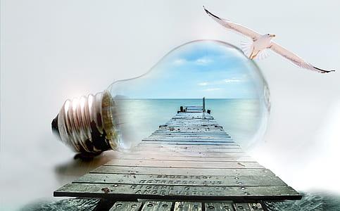 clear light bulb and gray wooden ocean dock illustration