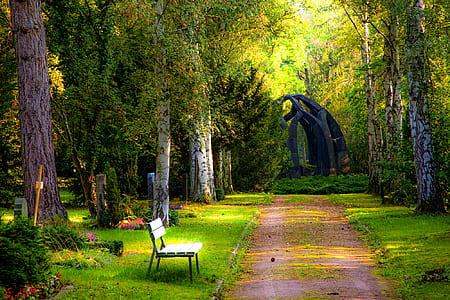 white bench near green leaf tree