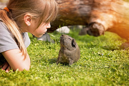 girl facing in front of rodent on grass field