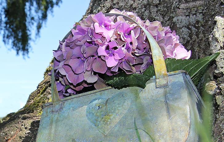 purple hydrangea flowers on handbag pot
