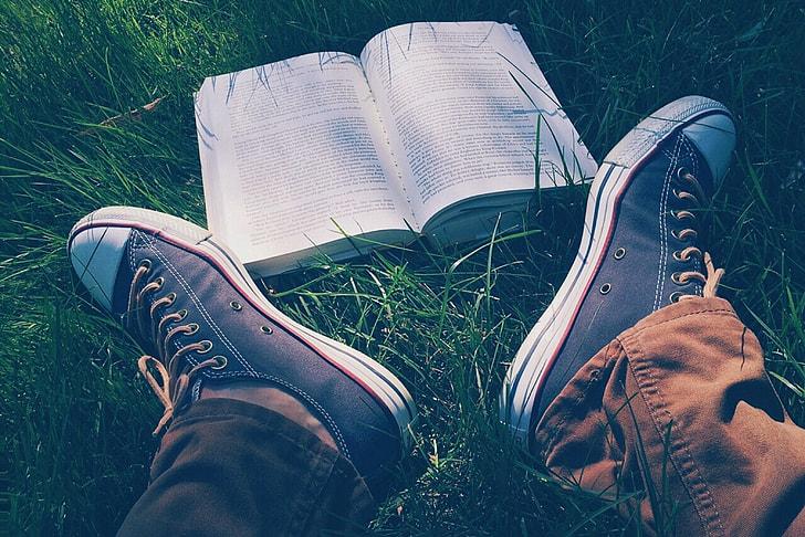 open book on green grass