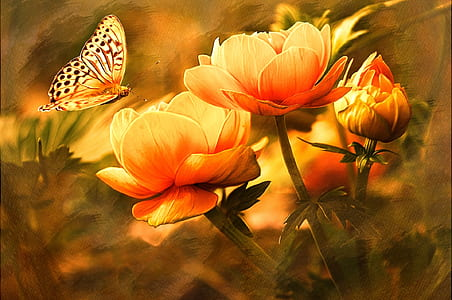 yellow butterfly near yellow and orange flower paiting