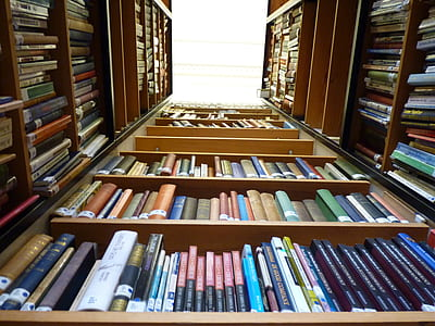 assorted books inside brown bookcase lot