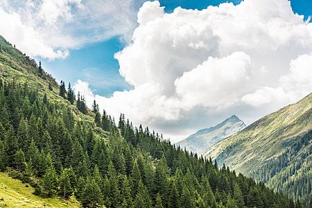 Beautiful Nature in Romanian Mountains