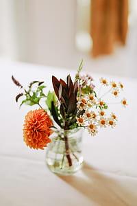orange dahlia flower on table