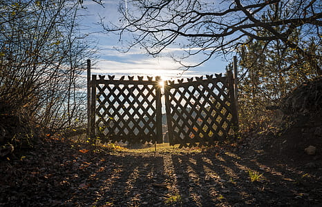 brown wooden fence gate