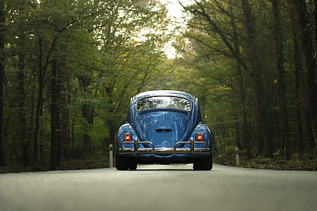 classic blue Volkswagen Beetle coupe on concrete road between trees