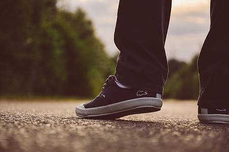 person wearing pair of black Lacoste low-top sneakers