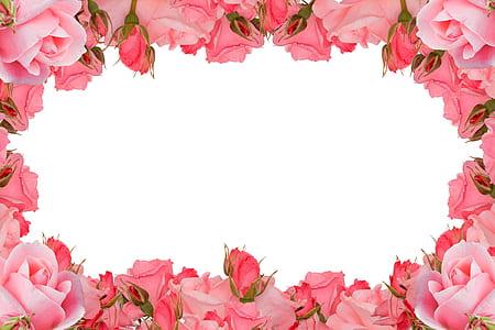 pink floral frame \