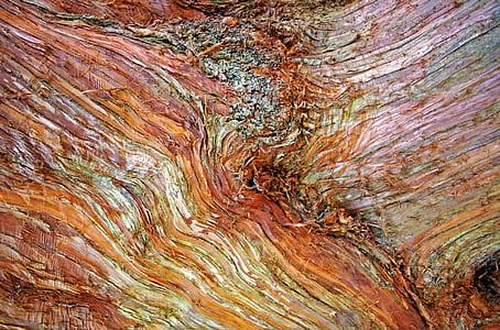 closeup photography of brown log