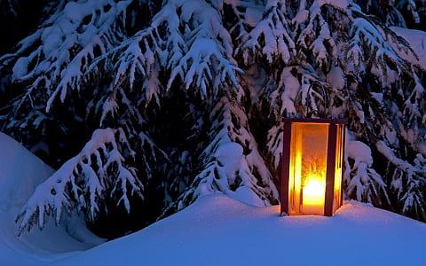 brown lamp on snow field
