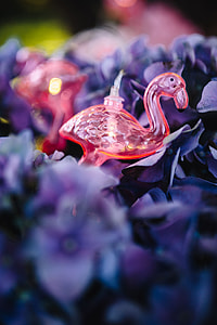 Flamingo light garland & pink flowers