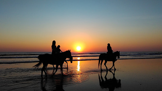 silhouette photography of a three person riding a horse walking on the beach under