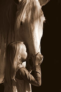 girl kissing white horse