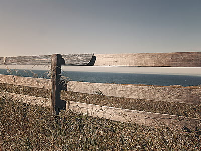 brown wooden fence near sea at daytime
