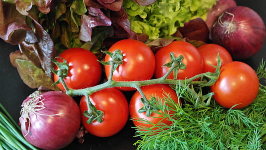 cherry tomatoes, lettuce, and red onions
