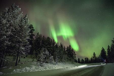 aurora burealis during night time