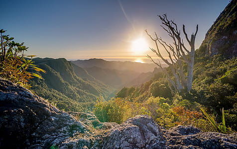 view of mountain range during sunrise