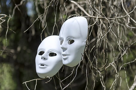 shallow focus photo of white volto masks on brown tree stems