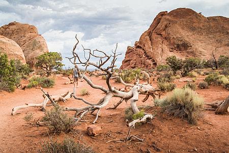 Utah Nature Cliché